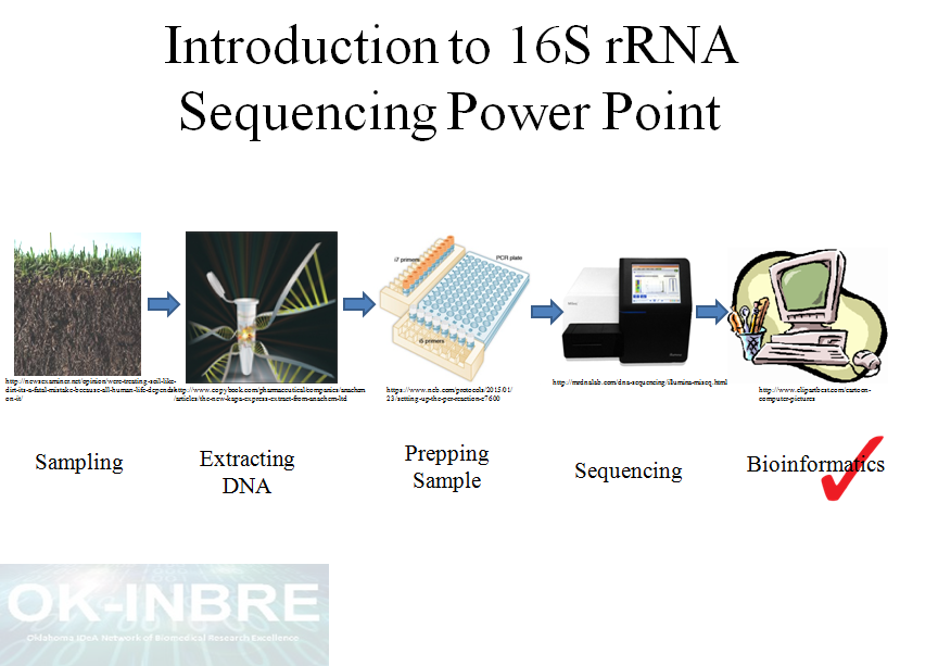 16Simage?ver=2018 07 31 115418 950 introduction to 16s rrna sequencing